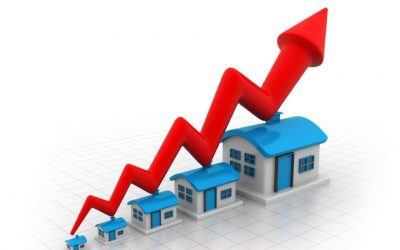 Real Estate Market STATS for August 2021